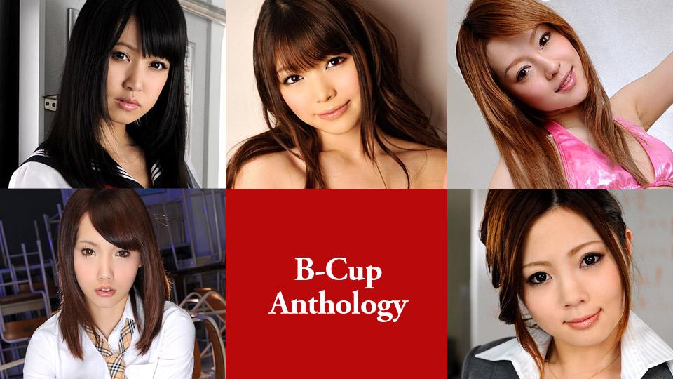 [Caribbeancom 101019-001] B Cup Anthology